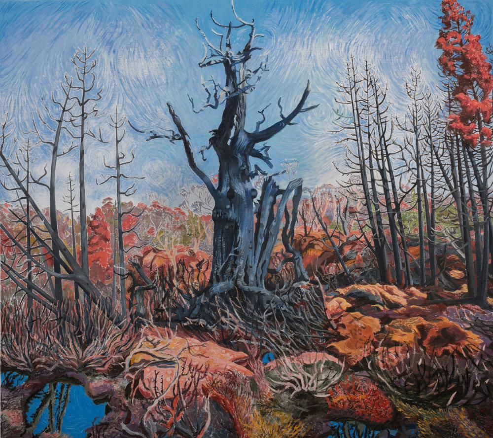 Artist in Residence University of Tasmania